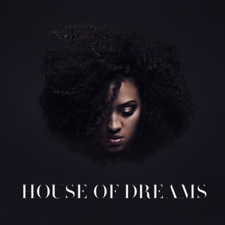 Naomi-Pilgrim-House-of-Dreams-2014