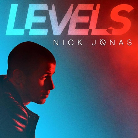 nick-jonas-levels-2015