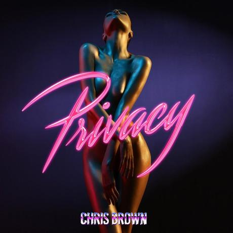 chris-brown-privacy-2017